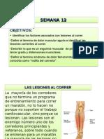 Semana 12 - Ejercicios y Lesiones