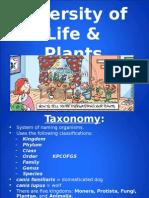 ap - diversity of life & plants
