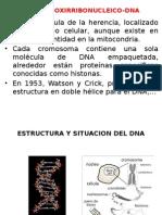 Ácidos Nucleicos 2014-2