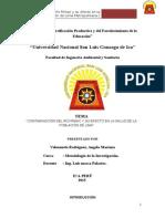 TRABAJO-DE-INVESTIGACION-RIO-RIMAC-modificado1.docx