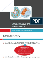 Introduccion Al Metabolismo (1)