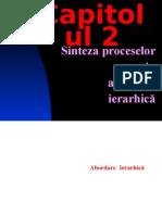 2_Sinteza Proceselor Prin Abordare Ierahica_2013