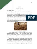 Bab 2 Bio Oil (Punya Siti Rahmah, ST)
