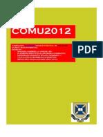 campaign report final pdf