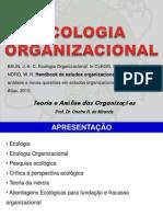 04,10,13 Ecologia Organizacional