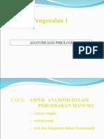 Anotomi & Fisiologi