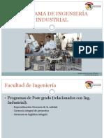 Prog. Ing.industrial