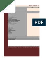 Modelo Plan Financiero Personal