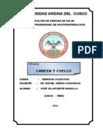 CABEZA CUELLO 22.doc
