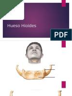 Hueso Hioides.ppt