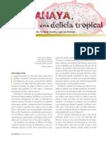 05-488-La-pitahaya.pdf