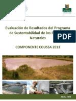 COUSSA - Evaluación.pdf