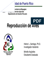 Avian Reproduction