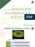 Fermentacion Alcoholica[1]