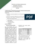 Informe Comunicacion Serial
