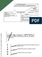mapas-conceptuales tahuantinsuyo.doc