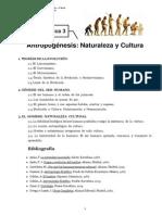 Teoría de la Antropogénesis
