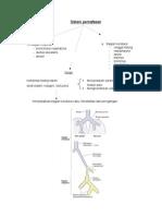 Histologi Sistem Pernafasan