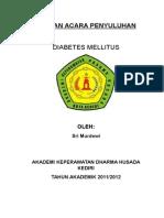 SAP DM VIC