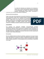 Biomoléculas.prof Burgos