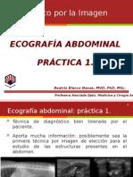Ecografia Abdominal