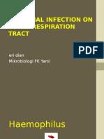 Bacterial Infection on Upper Respiratory Tract Hemofillus Moraxella Fusobacterium Ed 1 (1)