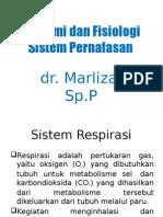Anatomi Dan Fisiologi Sistem Dr. Marliza, Sp.P