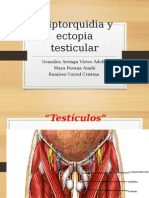 Criptorquidia y Ectopia Testicular TERM.modificado