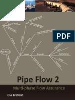 PipeFlow2