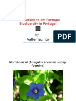 Biodiversidade Em Portugal