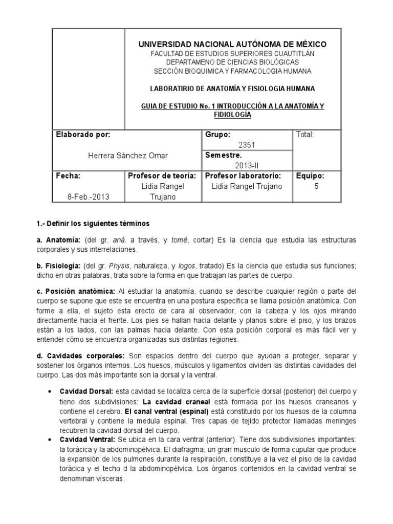 Contemporáneo Definir La Anatomía Y La Fisiología Términos ...