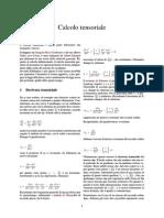 Calcolo tensoriale.pdf
