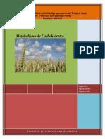 Folleto 4 Bioquimica Metabolismo de Carbohidratos 2012