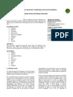 Informe Quimica Organica Sintesis de Colorante y Polimeros