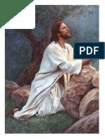 imagenes y salmos iglesia