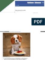 Comida para perros y gatos casera.pdf