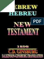 01 BookOfMatthew Testament Hebrew 1898