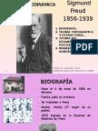 teoría psicodinamica