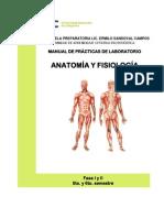 Manual AnatomíayFisiol 2014
