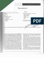 Capitulo 7 Tegumento (1).pdf