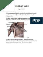 Disecciones Region Deltoides