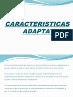 CARACTERISTICAS ADAPTATIVAS