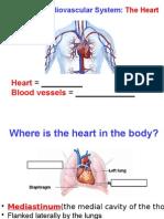 Ch18 Heart (Blackboard) 2-2-15