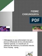 fiebrechikungunya-140617150127-phpapp02.pptx