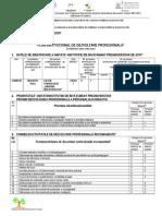 3.1dsa Plan Institutional Dez Profesionala LICEUL TEHNOLOGIC D. BOLINTINEANU
