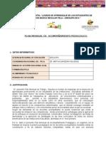 11. Plan Mensual - Arequipa.