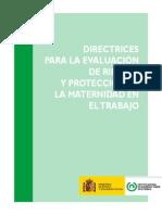 Protección Mujer Embarazada