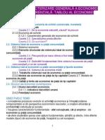 Eco_2_car Gen a Econ Cu Piata Concurentiala (27)