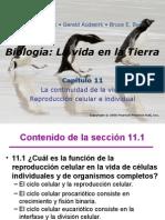 Presentación Continuidad de La Vida (Clase Capítulo 11-2014)