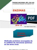 Clase 03, 04 Enzimas 2014-b